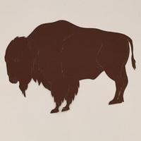 Buffalo 5 Inch