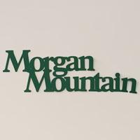 Morgan Mtn